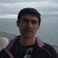 Давид Гочелашвили